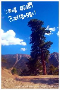 June 2014 challenge