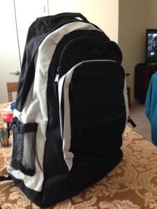 Vegas backpack