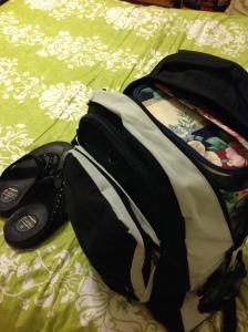 vegas packing 4