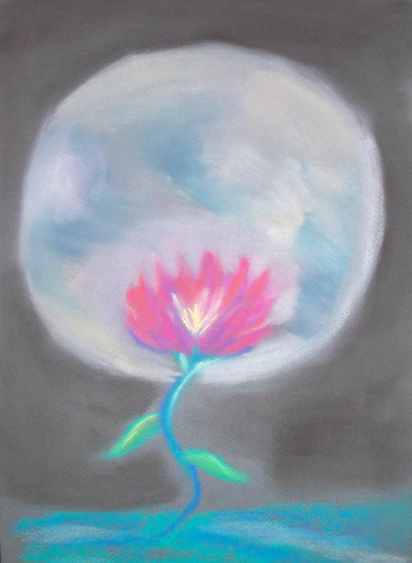 Growing in Moon Light