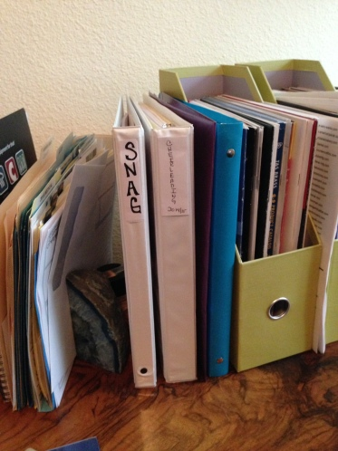 The Binders of my Life | Did That Just Happen Blog