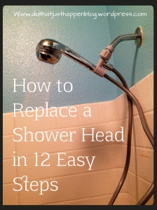 How to Replace a Shower Head in 12 Easy Steps |Did That Just Happen Blog