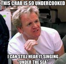 Gordan Ramsey cooking meme at Did That Just Happen Blog